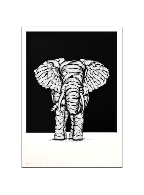 Ribboned Elephant White Edition